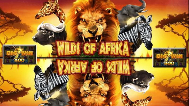 รีวิวเกมสล๊อต Wilds of Africa สล็อตออนไลน์ 666