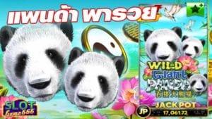 สล็อต ออนไลน์ Wild Giant Panda แตกง่าย