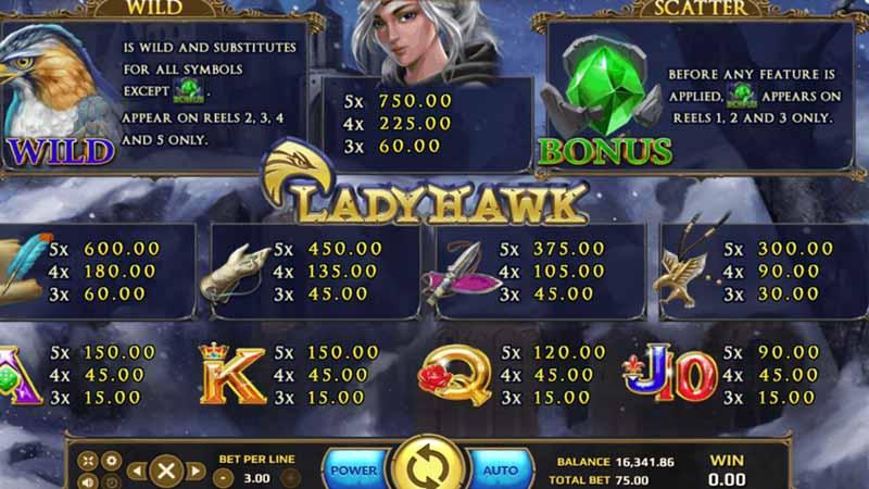 รูปแบบเกมสล็อตLadyHawk slot