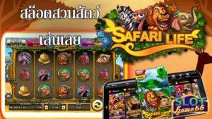 รีวิว สล็อตสวนสัตว์ เล่นเลยSafari Life slot