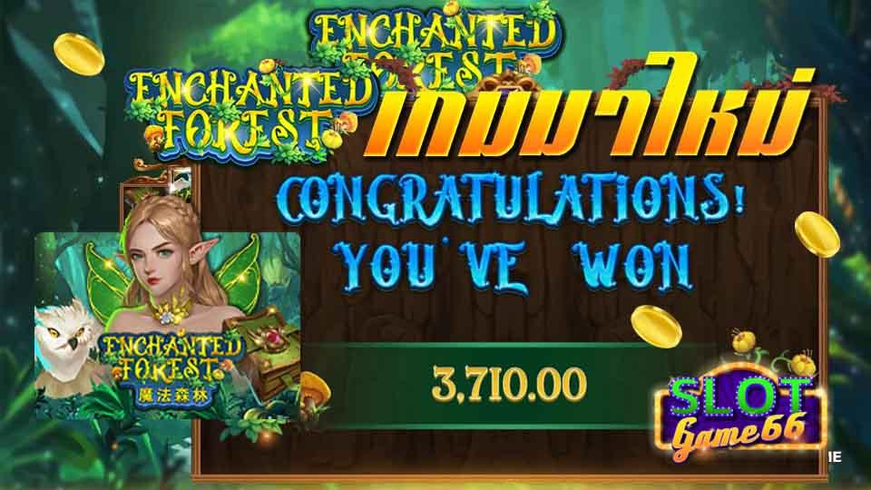 สล็อต เกม Enchanted Forest slot